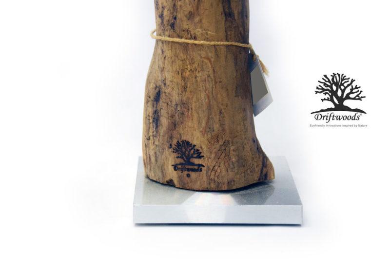 treibholz-vase-astrus